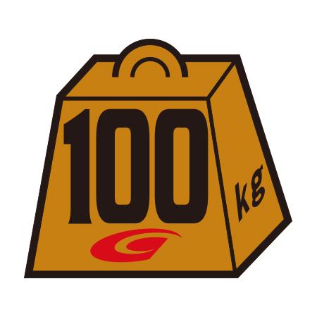 ウェイトステッカー100kg