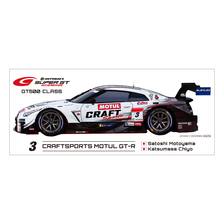 2018 GT 500 ワイドステッカー(#3)