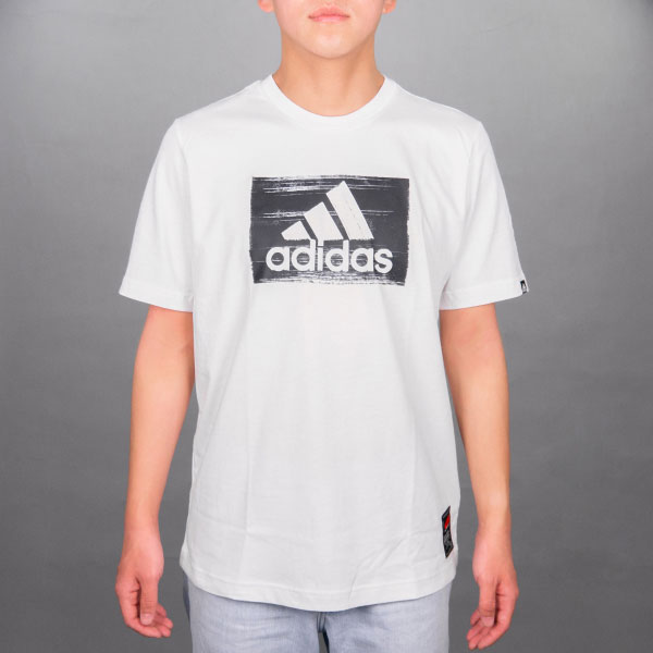 adidas ブラシストロークグラフィックTシャツ(WH/Oサイズ)